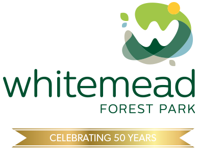 Whitemead Forest Park celebrating 50 years